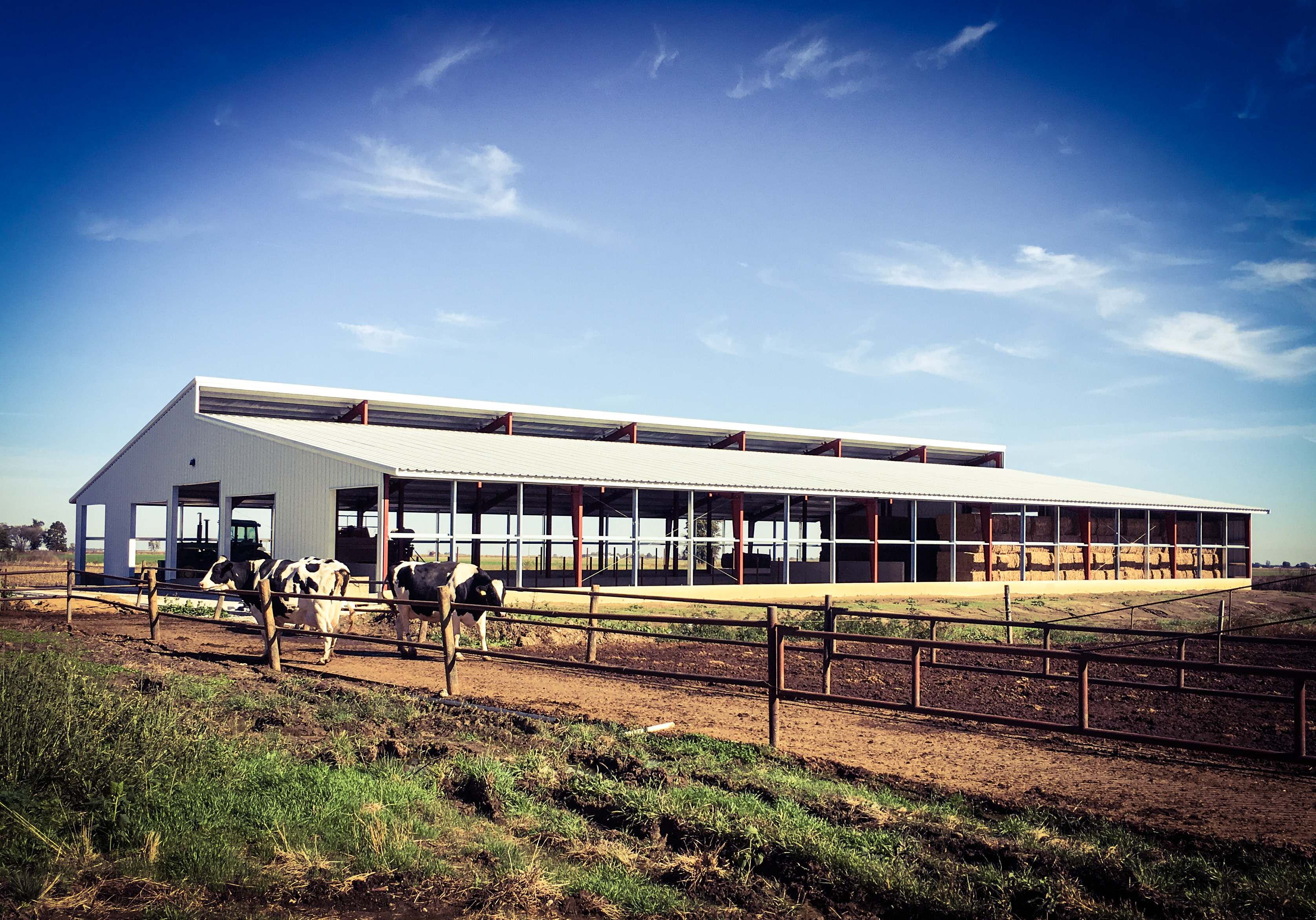 Cattle Barn projects
